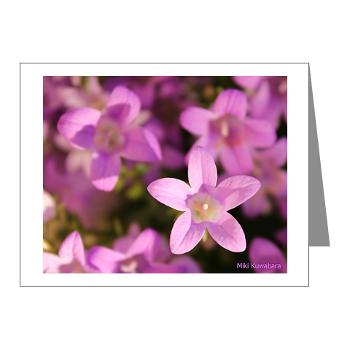 star_blossom_note_cards_pk_of_10
