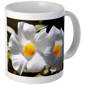 twin_blossoms_mugs